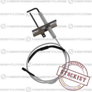 Biasi Electrode BI1313105