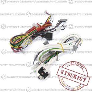 Ferroli Wiring Harness 39838940
