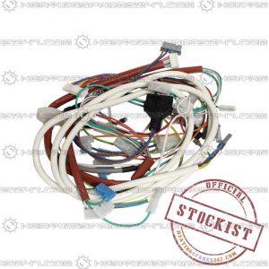 Ferroli Wiring Loom 39837710