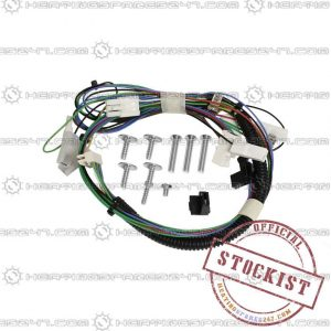 Wocrester Main Harness 87161057790