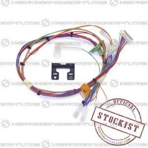 Worcester Main Harness 87161066990