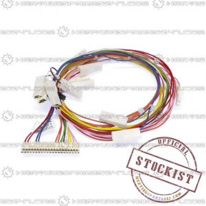 Worcester Main Harness 87161209810