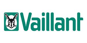 Heatingspares247.com, stockist of genuine Vaillant Electrodes & Leads